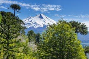 Consultores medio ambientales en Chile